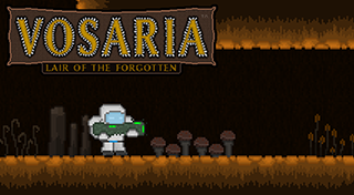 Vosaria : Lair of the Forgotten